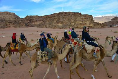 The TGL Team camel riding!