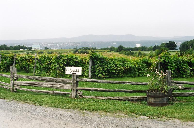 Vignoble Winery, Ile d'Orleans, Quebec