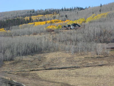 It was a long haul from Avon to Jackson, but these aspen grove showed the bare look as well as some golden sections.  This is still in the Colorado Rockies.