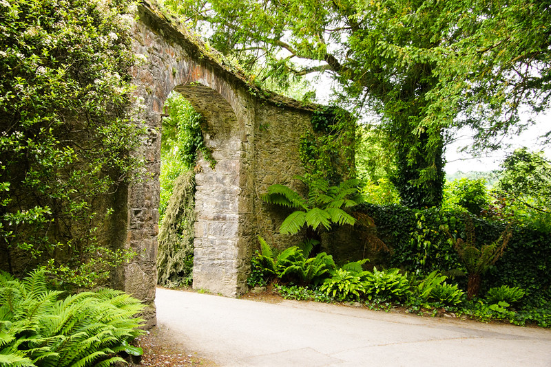 Arch at Blarney Stone