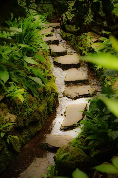 Irish National Stud & Japanese Gardens
