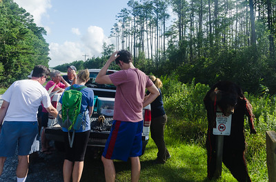 Black Bear Tour at Alligator River