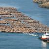 Port Susan on Camano Island WA