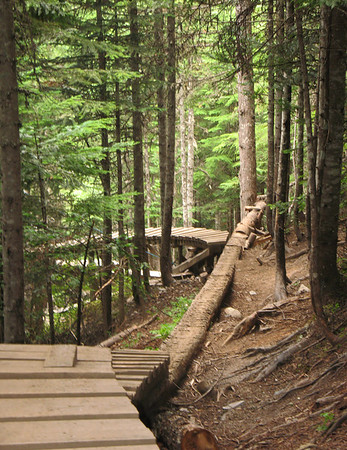 Whistler Mtn Bike Park 2007