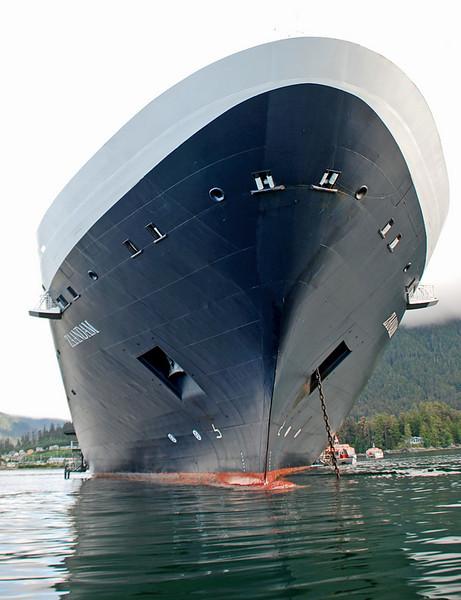 The Holland Cruise Line's Zaandam.