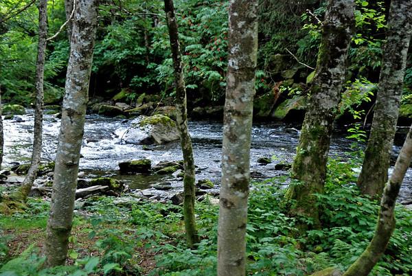 Ketchikan Creek.