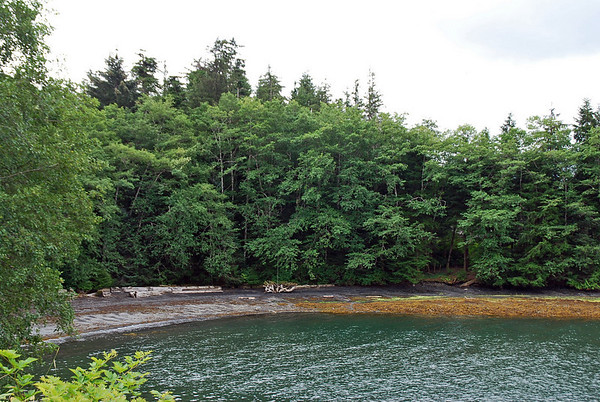 A beach at Totem Bight State Historical Park.