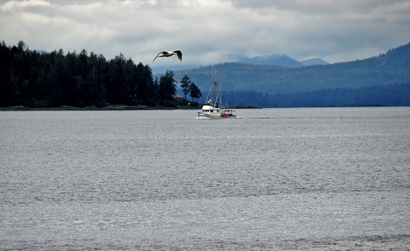The coast at Halibut Point State Recreation Site, four miles north of Sitka, Alaska.