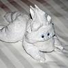 Towel creature: rabbit.