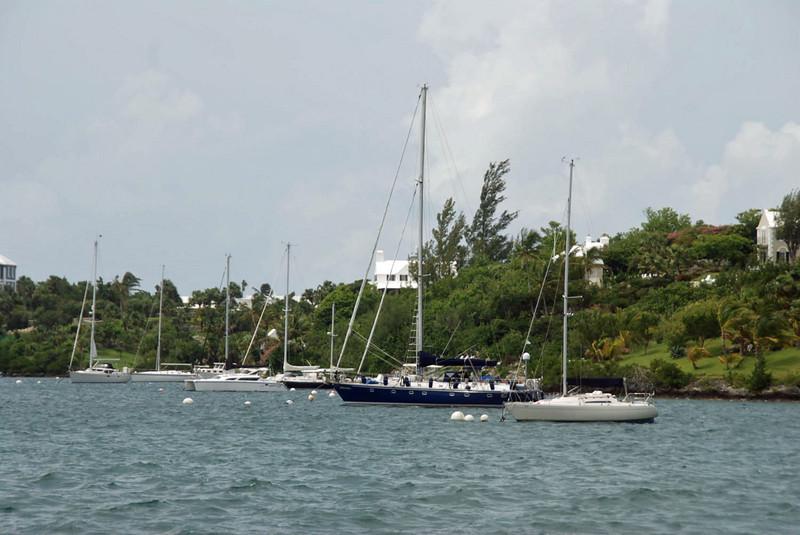 Ships near Hamilton.