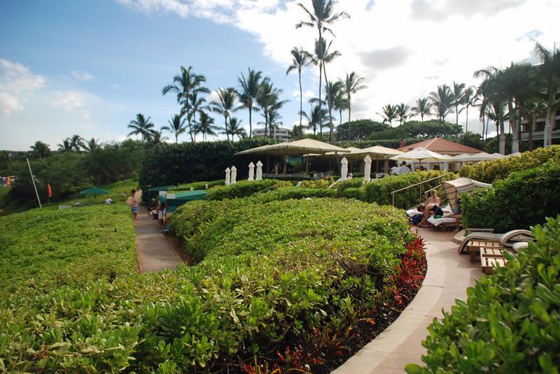 The cabana and chaise lounge area of the Four Seasons Maui.