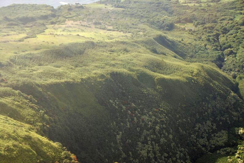 Maui hills.