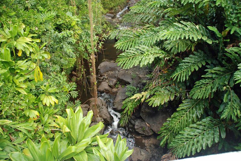 Stream at bottom of waterfall.