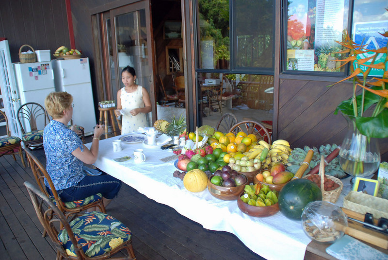 Private tasting of many different kinds of fruit at Ono Farms.