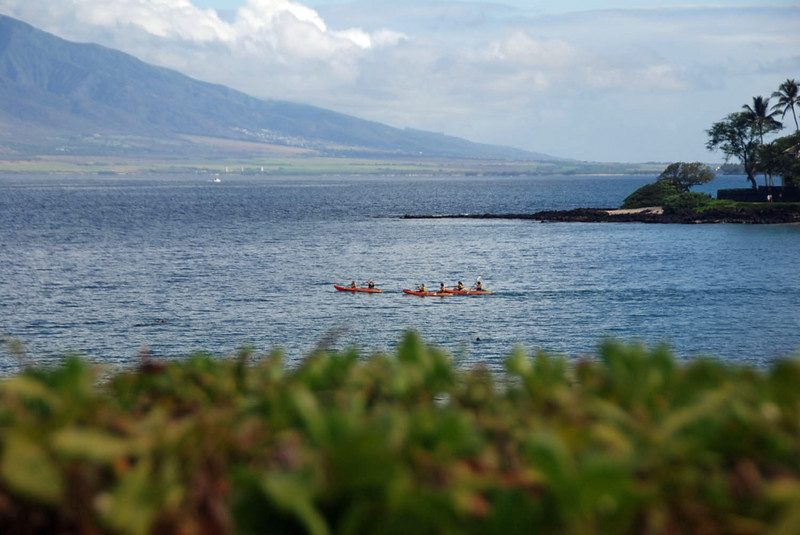 Sea kayaks leaving Wailea Beach.