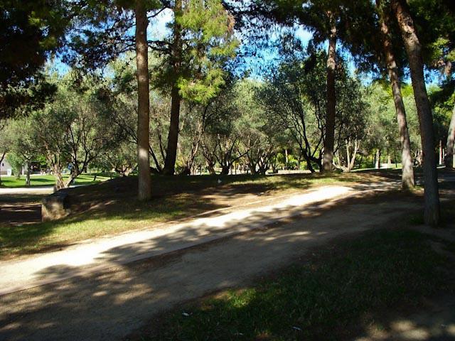Bike path in the Turia