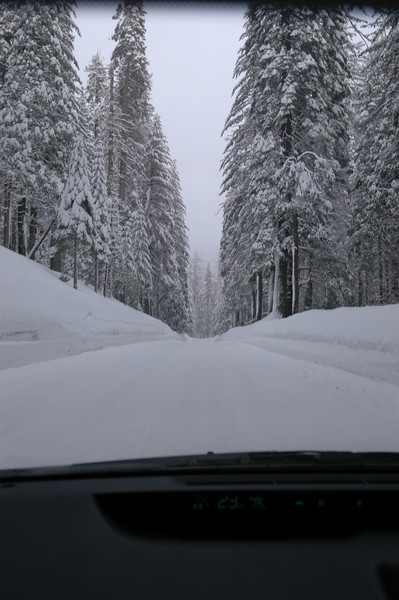 This was the view out of the Prius' windshield on Hwy 120