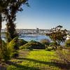 Hotel Phoenicia gardens