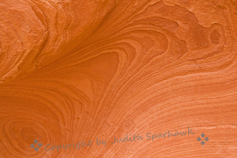 Nature's Designs ~ Patterns in the sandstone in Valley of Fire in Nevada.