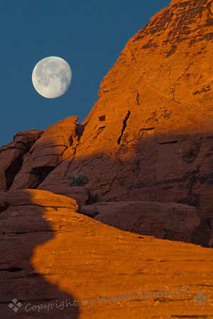 Moonset at Arch Rock Campground ~ I was happy to wake up in camp on the first morning to the sight of the almost-full moon setting above the beautiful red rock cliffs. It felt magical and a perfect start to this great trip.