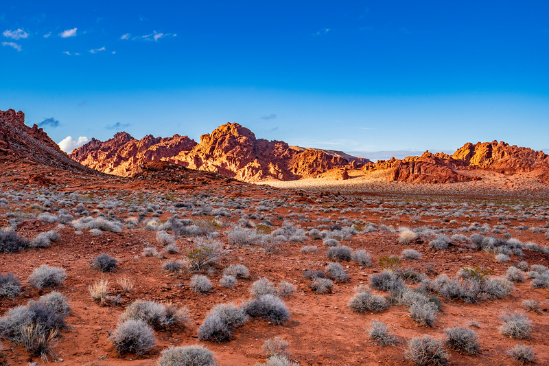 Landscape in the Valley of Fire