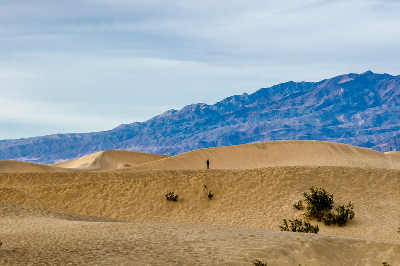 Alone on th dunes