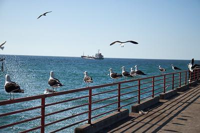 Fishing pier, Valparaiso.