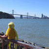 Flat never dreamed he'd get to see San Francisco Bay.