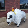 We still haven't seen a real buffalo, but Flat thought he'd pose with this one.