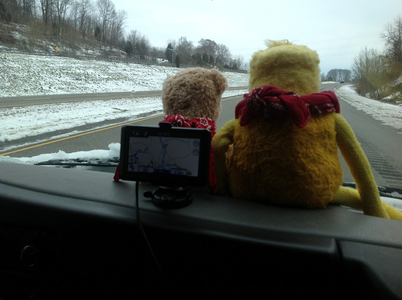 On February 4, my (Bonnie) 66th birthday, we began our adventure by driving across the mountains into North Carolina. It was very snowy all over the region, but Flat Eric and his pal Teddy (who are our travel buddies) were excited about the trip.