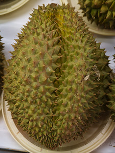 Stinky Durian Fruit