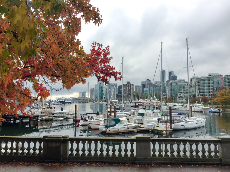 First day in Vancouver...started out a little overcast and drizzly.  I started by hiking around most of Stanley Park, a GIANT park on a pennensula by the harbor.  It is comparable to Central Park in NYC.  Super place!