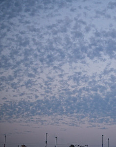 Mackrel Sky