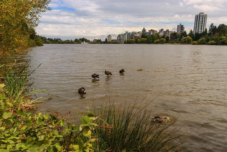 0828 Stanley Park