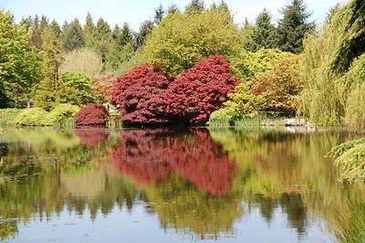 Van Dusen Botanical Garden, May 2008