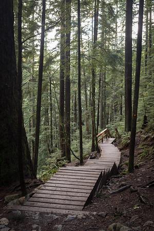 Top of 220 steps