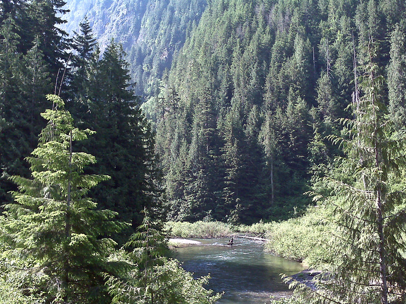 Another random mountain stream
