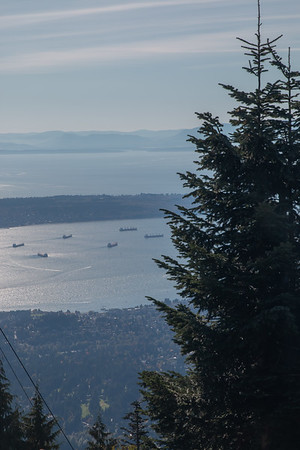 View from top of Grouse Mountain