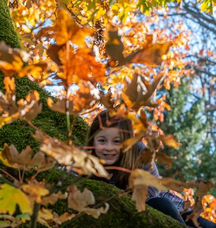 Caroline in the Tree