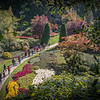 Elevated view of Butchart Gardens