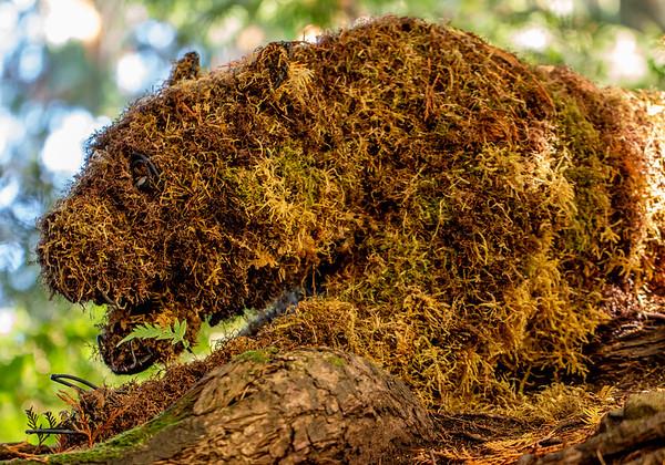 Cougar or leopard made of ferns at Butchart Gardens
