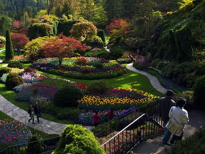 Victoria & Butchart Gardens, Vancouver Island