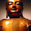 Buddha, MOA