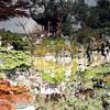 Upside Down, DR. Sun Yat-Sen Classical Chinese Garden