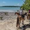 Horse riding with Megan of Santo Horse Adventures - not a bad way to spend a morning