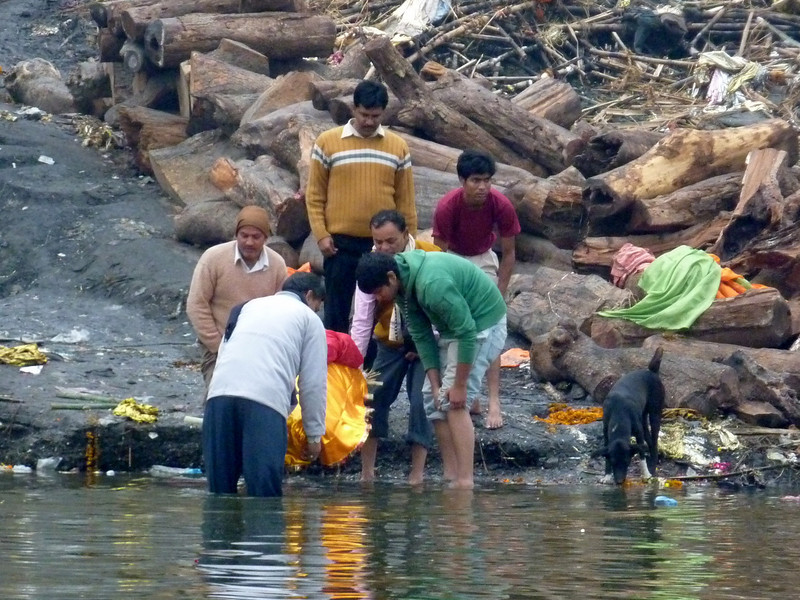 Immersing a Family Member's Body in the Ganges for Purification Prior to Cremation