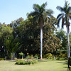 Sahelion Ki Bari Gardens III