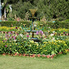 Sahelion Ki Bari Gardens IV
