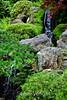 Waterfalls - Japanese Tea Garden (2)
