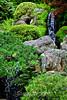 Waterfalls - Japanese Tea Garden (3)